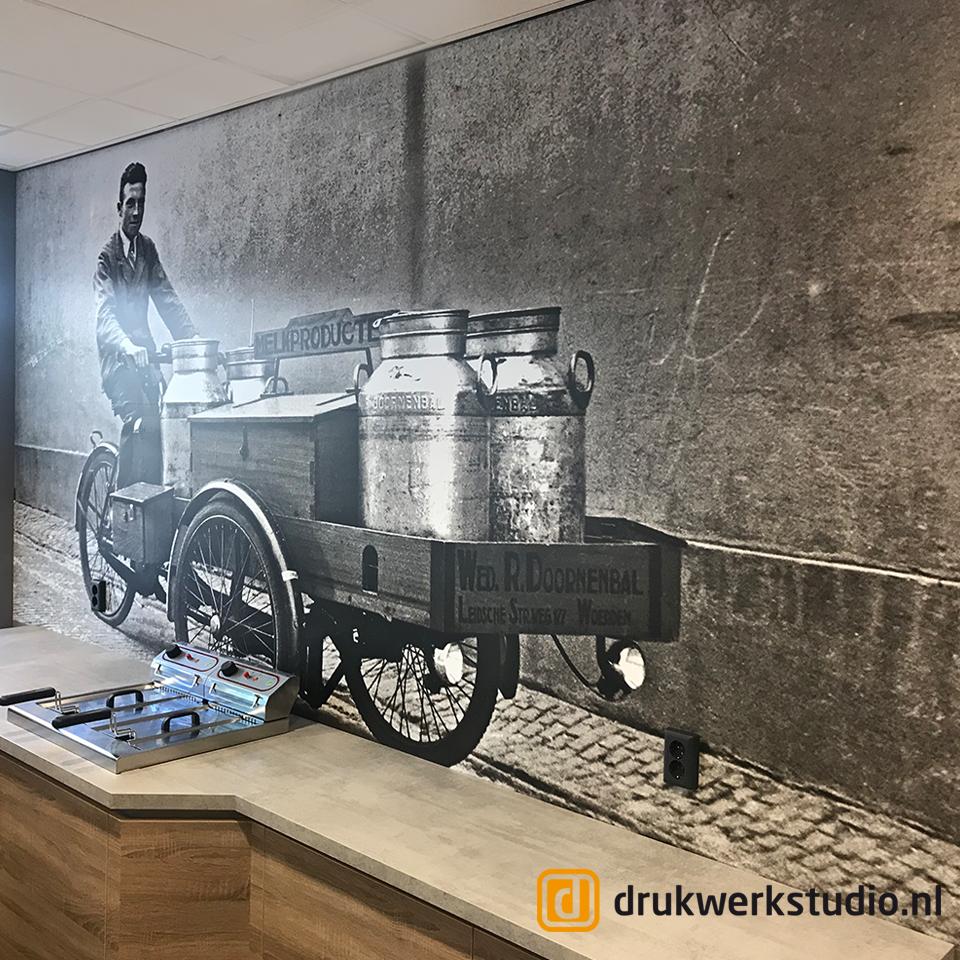 Alexanderhoeve F Hendriklaan Den Haag_muursticker
